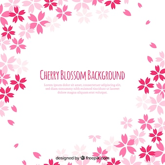 Sakura background in flat design