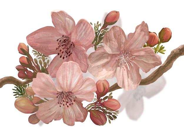 Sakura desabrochando desenhados à mão em um galho