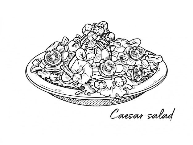 Salada caesar com camarão isolado em um fundo branco. croqui de pratos italianos. ilustração