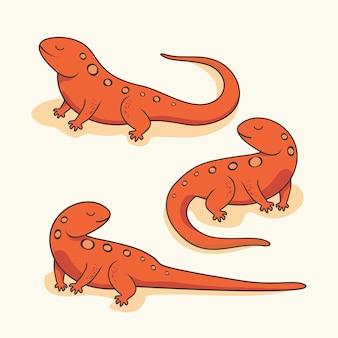 Salamandra newt cartoon réptil anfíbio animais