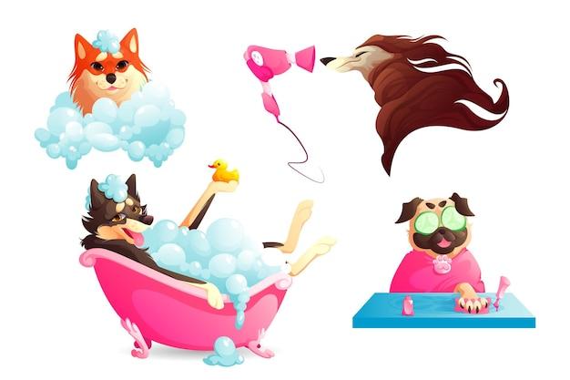 Salão de higiene e spa para cães