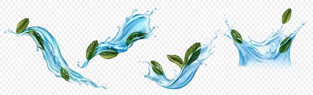 Salpicos de água com conjunto de folhas de mentol ou hortelã