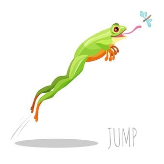 Sapo colorido brilhante, pulando para pegar mosca