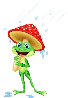 Sapo fofo usando capa de chuva sob cogumelo