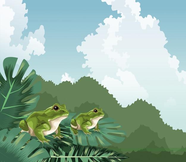 Sapos em monstera deixa paisagem tropical da fauna e flora