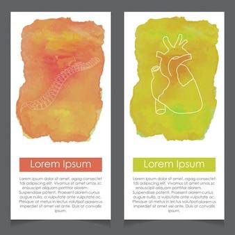 Segmentos da coluna vertebral e do molde do coração cartão do fundo da aguarela