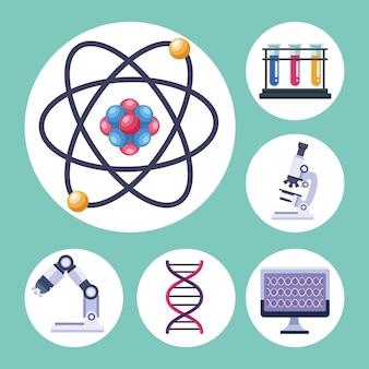 Seis itens de teste genético