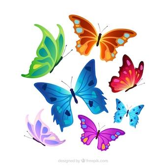 Seleção de borboletas coloridas