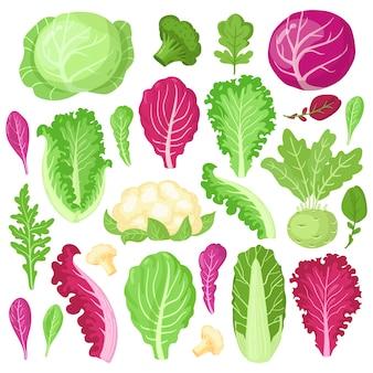 Seleção de vegetais coloridos