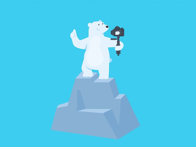 Selfie de urso polar fofo e vloging no pico da ilustração do conceito de colina
