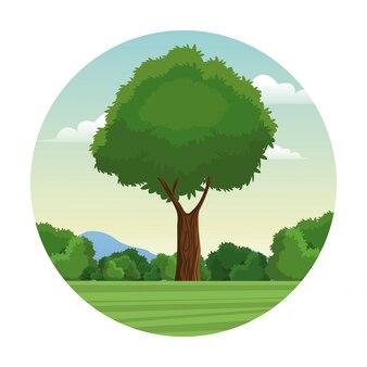 Selo da paisagem florestal da árvore