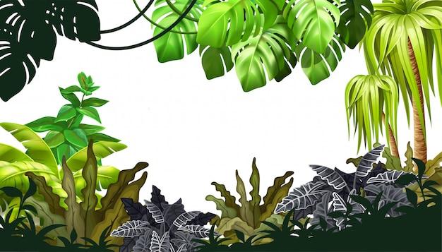 Selva de fundo com palmeiras e cipós.