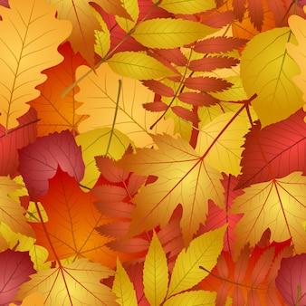 Sem costura com folhas de outono vermelhas e amarelas.