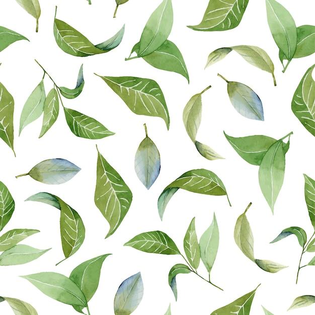 Sem costura padrão floral com folhas verdes em aquarela