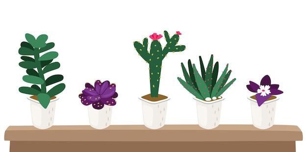 Semeando em vasos. plantas de jardim, suculentas para estufa. conjunto de vetores de flores, verdes e cactos isolados