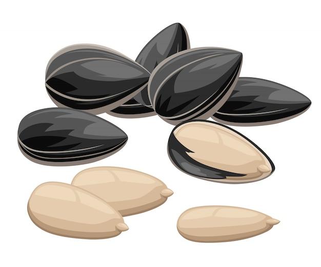 Sementes de girassol com casca e sem comida pronta para comer ilustração na página do site da web com fundo branco e aplicativo móvel