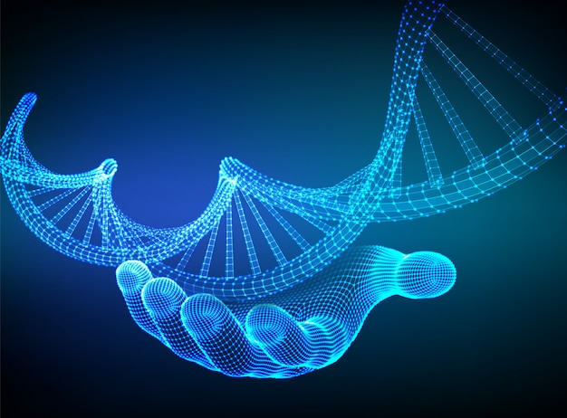 Sequência de dna na mão. wireframe dna código moléculas estrutura malha.