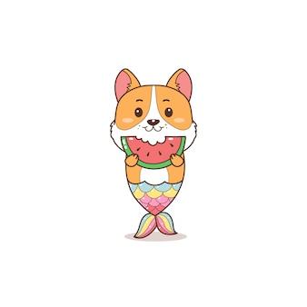Sereia bonito corgi comendo melancia verão dos desenhos animados