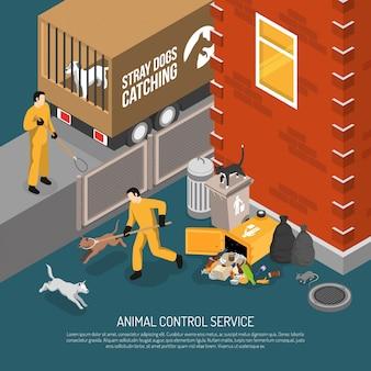 Serviço de controle de animais isométrico