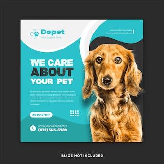 Serviço de treinamento de animais de estimação nas mídias sociais e modelo de postagem no instagram