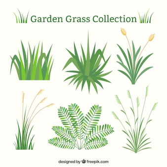 Set grama verde no design plano