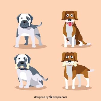 Set plana de cães bonitos