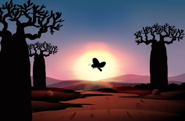 Silhueta da natureza ao ar livre, cena do pôr do sol