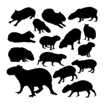 Silhueta de animais de capivara