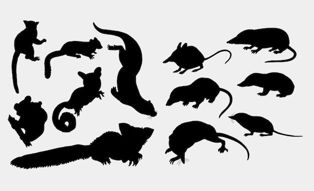 Silhueta de animais doninha, esquilo, coala, rato e rato