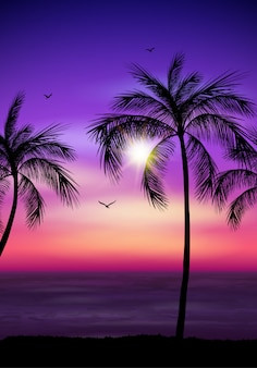 Silhueta de árvore de palma