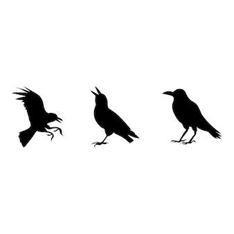 Silhueta de bruxa halloween corvo em fundo branco. modelo de animal de vetor isolado