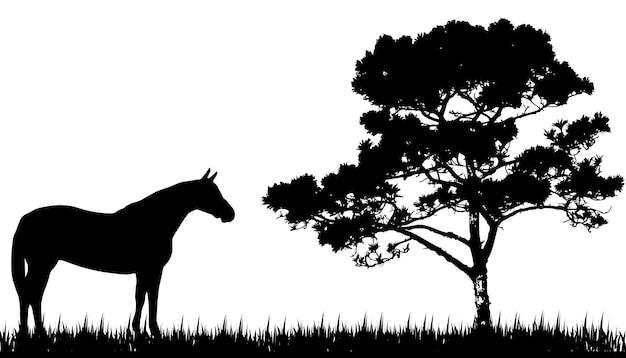 Silhueta de cavalo e árvore