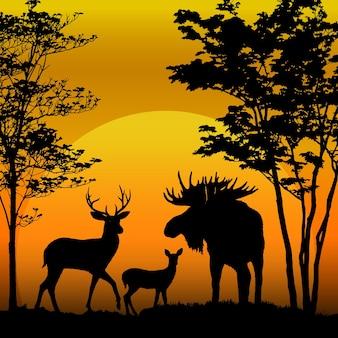 Silhueta de cervos e alces no fundo do sol