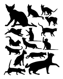 Silhueta de gato