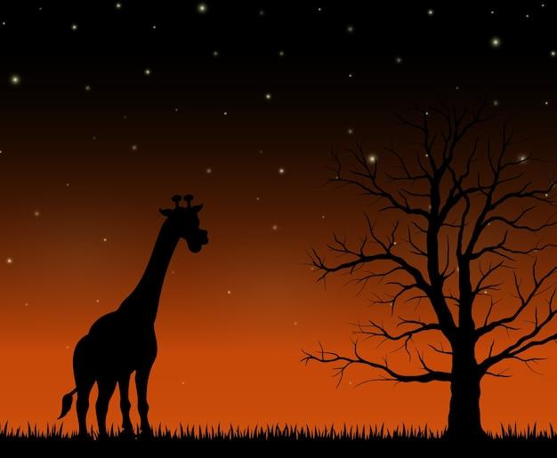 Silhueta de girafa em pé no fundo da noite