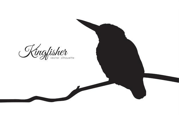 Silhueta de kingfisher sentada em um galho