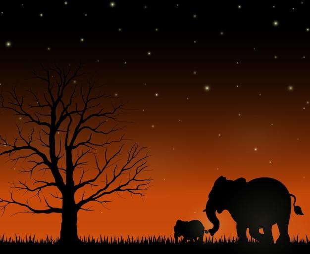 Silhueta de mãe e bebê elefantes no fundo da noite