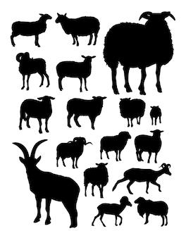 Silhueta de ovelhas
