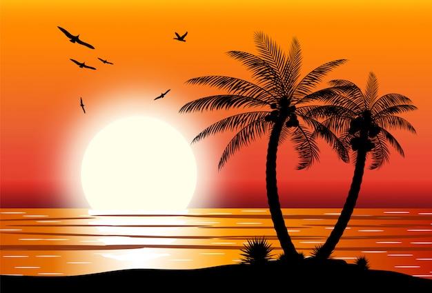 Silhueta de palmeira na praia.