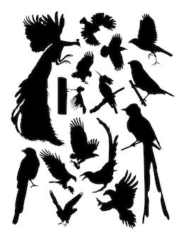 Silhueta de pássaros