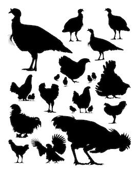Silhueta de peru e frango