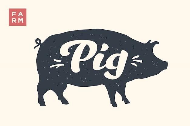 Silhueta de porco com letras
