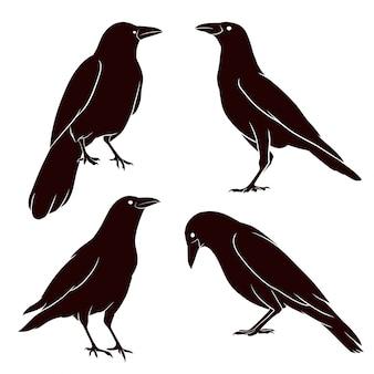 Silhueta desenhada de mão do corvo
