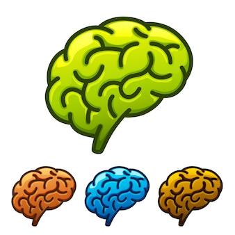 Silhueta do cérebro verde sobre um fundo branco. ilustração vetorial
