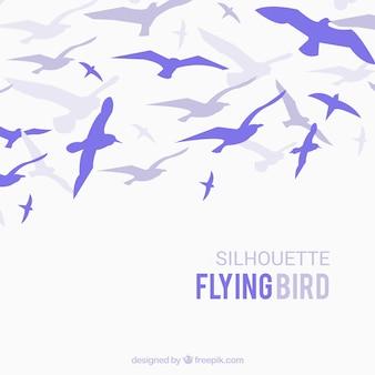 Silhueta fundo de pássaro voador