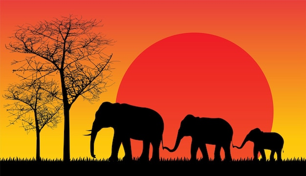Silhueta negra da natureza selvagem do elefante.