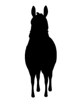 Silhueta negra de lhama cartoon animal design ilustração em vetor plana isolada na vista frontal de fundo branco