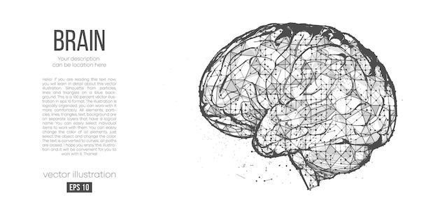 Silhueta poligonal abstrata do cérebro