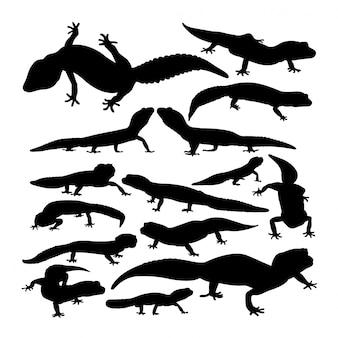 Silhuetas animais de leopardo lagartixa.