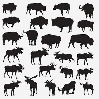 Silhuetas de alce de búfalo